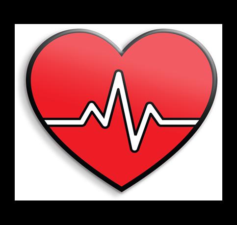 ACR159 CARDIAC HEART